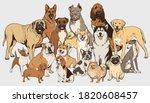 Dog Illustration Collection....