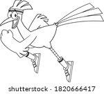 Black And White Roadrunner Bird ...