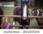 Child Beside Two Horses ...