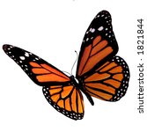 Stock photo isolated butterfly 1821844