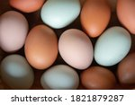 Naturally Colorful Chicken Eggs ...