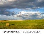 Rural Landscape With Harvested...