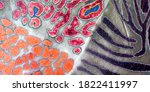 Colorful Animal Patchwork...