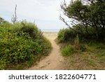 Sandy Access Beach In Jard Sur...
