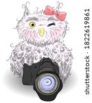 Cute Gray Owl With A Camera An...