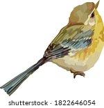 Image Of A Little Bird.vector