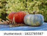 Autumn Still Life Of Orange And ...