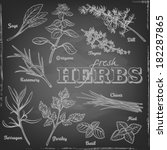 Set of various herbs with rosemary, sage, dill, chives, mint, basil, tarragon, parsley, thyme and oregano with typography on a blackboard.