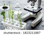 Biotechnology Laboratory With...