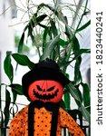 Angry Pumpkin Scarecrow Fall...