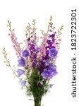 bouquet of meadow flowers...   Shutterstock . vector #1823722301