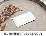 closeup of blank business card... | Shutterstock . vector #1824270701