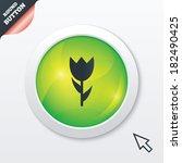 flower sign icon. rose symbol....