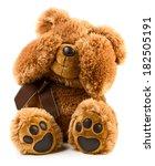 Toy Teddy Bear Isolated On...