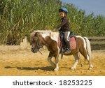 Little Girl Riding A Miniature...