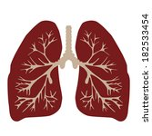 lungs of the person   Shutterstock . vector #182533454