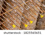 Small photo of Rusty steel threaded rods bars with yellow protection caps. Covers protect workers from impalement on hazardous protruding metal on construction building sites. Overhead top down view