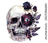 Watercolor Painting Of Skull...