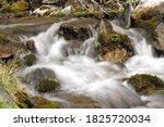 mountain stream in the altai... | Shutterstock . vector #1825720034