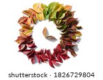 Colorful Leaves In A Circle On...
