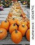 Autumn Display With Pumpkins ...