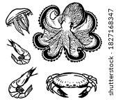Sea Food Sketch Style. Shrimp ...