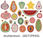 Colored Slices Of Exotic Fruits ...