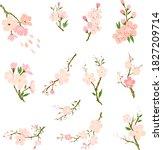 free hand sakura flower vector... | Shutterstock .eps vector #1827209714