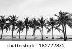 Black   White View Of Beautifu...