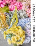 Eremurus Flowering Ornamental...