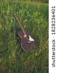 Acoustic Guitar On The Grass....