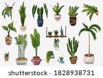 vector hand drawn set of...   Shutterstock .eps vector #1828938731