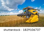 Grain Harvesting Combine In A...