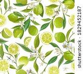 lime seamless fruit vector... | Shutterstock .eps vector #1829452187