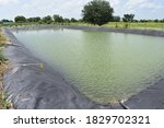 Artificial Lake Or Pond Made...