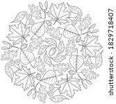 Autumn Leaf Mandala White 005