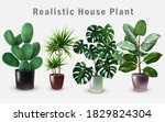 realistic house plant in design ... | Shutterstock .eps vector #1829824304