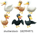 6,animal,aqua,aquatic,background,beak,bird,black,brown,cartoon,clip-art,clipart,collection,creatures,design