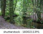 Este River In Lower Saxony ...