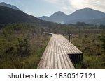 Wooden Walkway Platform Over...