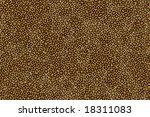 leopard texture seamless | Shutterstock . vector #18311083