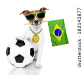 Brazil Soccer Dog  With Ball ...