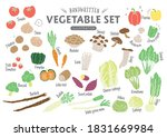 handwritten rough vegetable... | Shutterstock .eps vector #1831669984