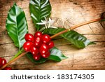 ������, ������: Coffee Plant Red coffee