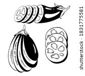 set of vector drawing eggplant  ... | Shutterstock .eps vector #1831775581