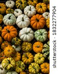 Colorful Gourds On Display In...