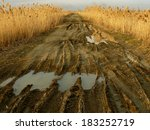 dirty rural road with deep tire ...   Shutterstock . vector #183252719