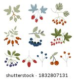 forest berries flat icons... | Shutterstock .eps vector #1832807131