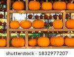 Fall Harvest Background On A...