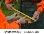 greymouth  new zealand ... | Shutterstock . vector #183300101